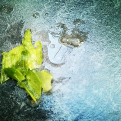 Gleitgel selber herstellen aus Aloe Vera Schalen mit Kartoffelschäler